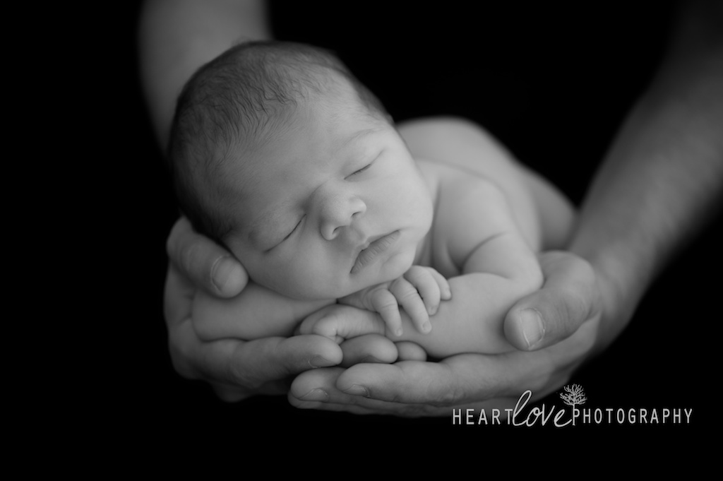 baltimore newborn photography