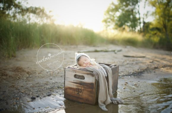 outdoor newborn portraits | annapolis md photographer