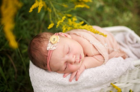madeline | maryland newborn photographer