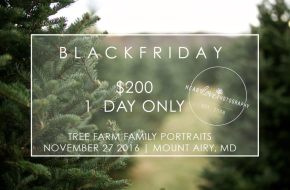 black friday deals | maryland photographer