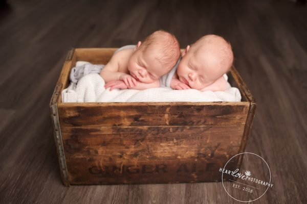 Newborn Twin Photographer Maryland Multiples